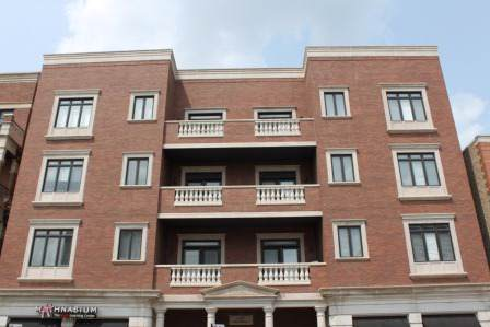 1442 W Fullerton Avenue 4C, Chicago, IL 60614 (MLS #10554496) :: Property Consultants Realty