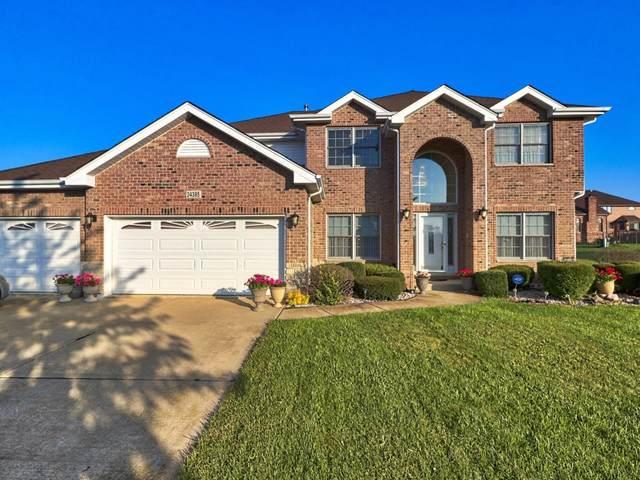24385 Newport Drive, Crete, IL 60417 (MLS #10554566) :: Property Consultants Realty