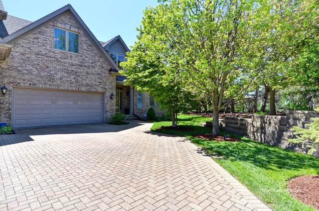 1751 Rizzi Lane, Bartlett, IL 60103 (MLS #10554635) :: Angela Walker Homes Real Estate Group