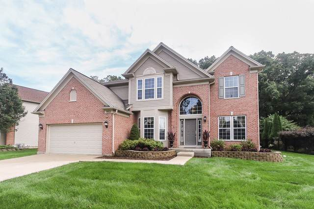 932 Blue Ridge Drive, Streamwood, IL 60107 (MLS #10554790) :: Property Consultants Realty