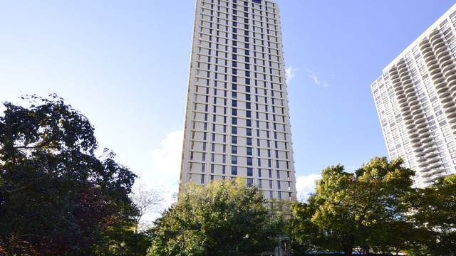 1960 N Lincoln Park West #304, Chicago, IL 60614 (MLS #10554818) :: Property Consultants Realty