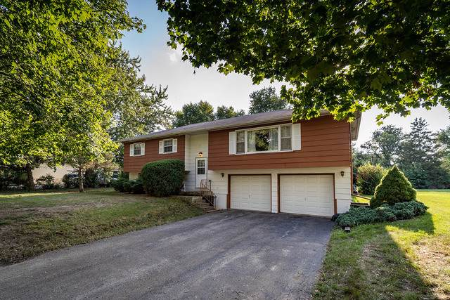 61 W Rickard Drive, Oswego, IL 60543 (MLS #10554882) :: The Dena Furlow Team - Keller Williams Realty