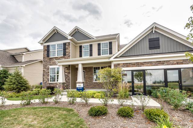 24600 W Prairie Grove Drive, Plainfield, IL 60544 (MLS #10554991) :: The Dena Furlow Team - Keller Williams Realty