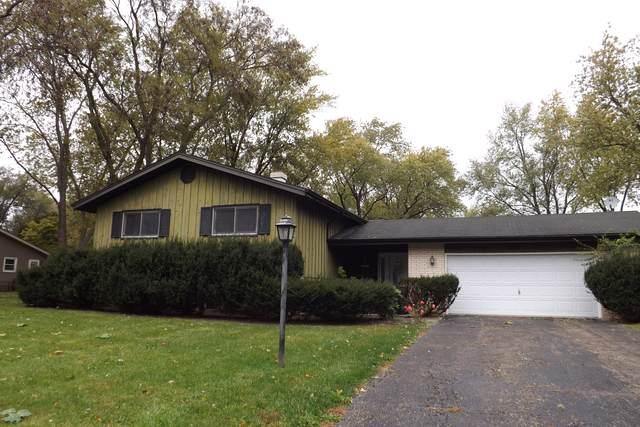 28W104 Plainview Drive, Naperville, IL 60564 (MLS #10555022) :: The Dena Furlow Team - Keller Williams Realty