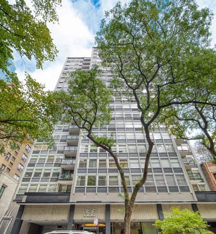 30 E Elm Street 17B, Chicago, IL 60611 (MLS #10555058) :: Property Consultants Realty