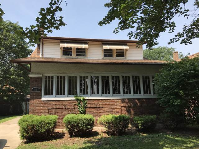 513 Knox Place, Joliet, IL 60435 (MLS #10555284) :: Ryan Dallas Real Estate
