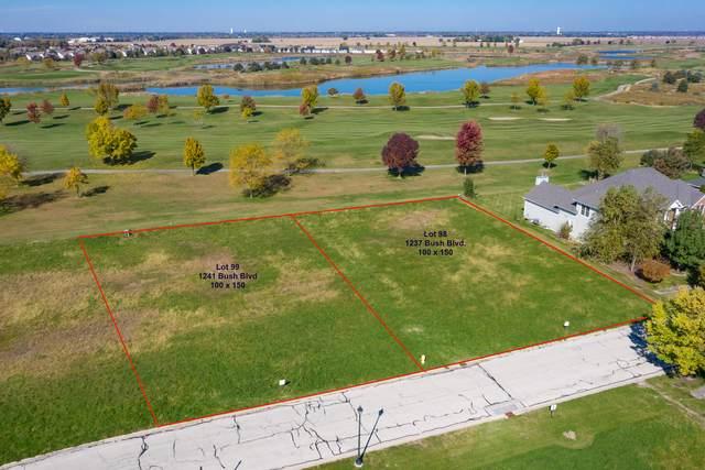 1237 Bush Boulevard, Bolingbrook, IL 60490 (MLS #10555515) :: Property Consultants Realty