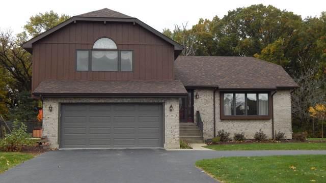 3413 E Cumberland Lane, Crete, IL 60417 (MLS #10555568) :: Property Consultants Realty