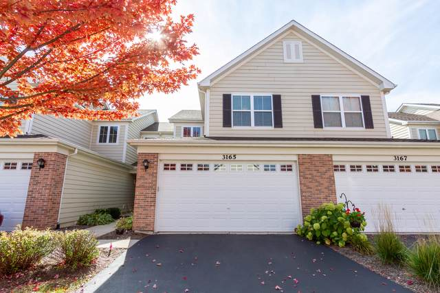 3165 Pearl Street, Elgin, IL 60124 (MLS #10556030) :: Property Consultants Realty