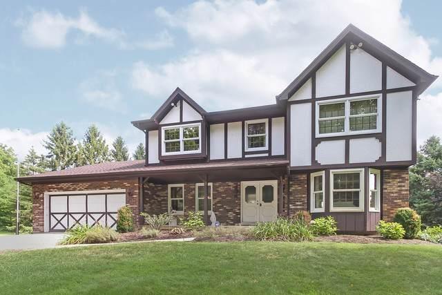 42W930 Mcdonald Road, Elgin, IL 60124 (MLS #10556060) :: Property Consultants Realty