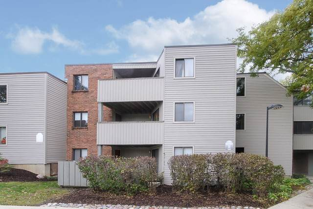 1830 W Highland Avenue D206, Elgin, IL 60123 (MLS #10556113) :: Property Consultants Realty