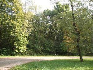 000 River Ridge Lane, Sandwich, IL 60548 (MLS #10556939) :: Littlefield Group