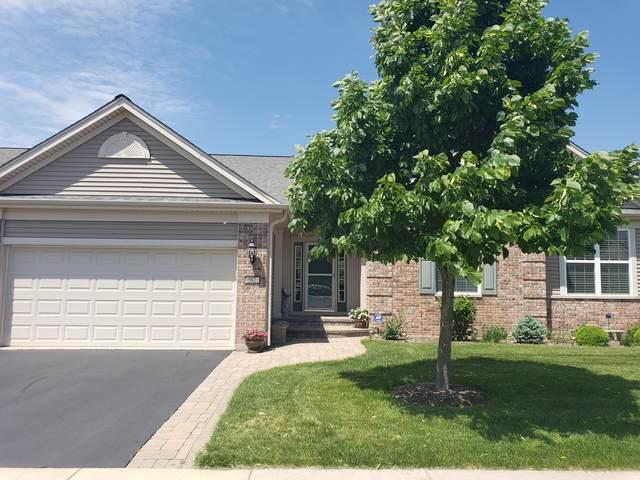 582 Tuscan Vw, Elgin, IL 60124 (MLS #10557068) :: Ani Real Estate