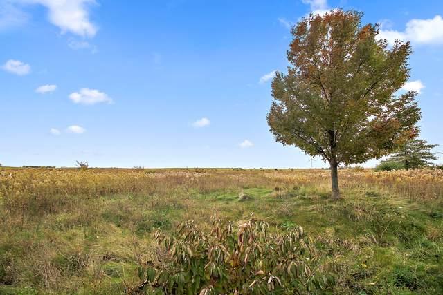 166 Prairie Turn, Cabery, IL 60919 (MLS #10557923) :: John Lyons Real Estate