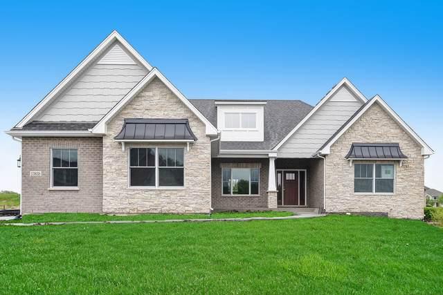 13838 W Stonebridge Woods Crossing Drive, Homer Glen, IL 60491 (MLS #10557945) :: RE/MAX IMPACT