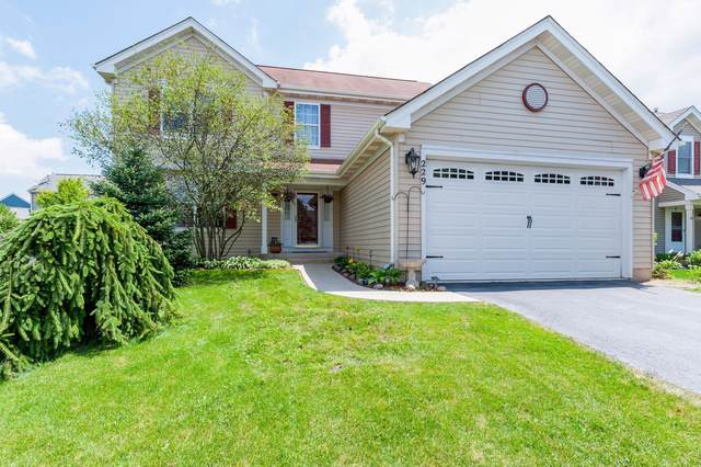 229 S Wildrose Court, Round Lake, IL 60073 (MLS #10558027) :: Property Consultants Realty
