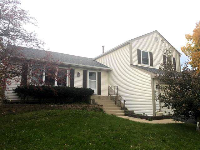 112 Canton Lane, Streamwood, IL 60107 (MLS #10558729) :: Century 21 Affiliated