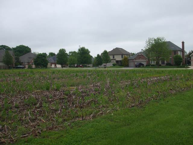 Lot 87 Blue Lake Circle W, St. Charles, IL 60175 (MLS #10560044) :: Berkshire Hathaway HomeServices Snyder Real Estate