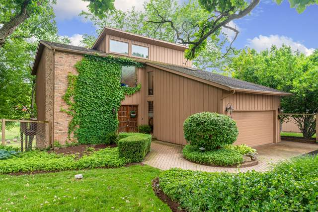 38W779 Brindlewood Lane, Elgin, IL 60124 (MLS #10560068) :: LIV Real Estate Partners
