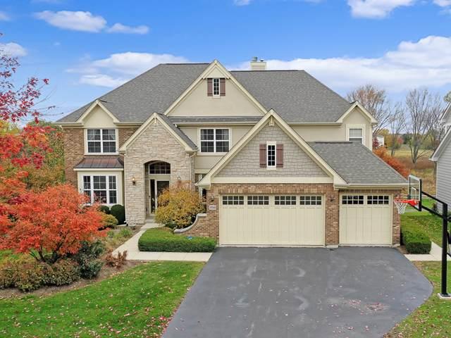1700 Creeks Crossing Drive, Algonquin, IL 60102 (MLS #10560798) :: Ryan Dallas Real Estate