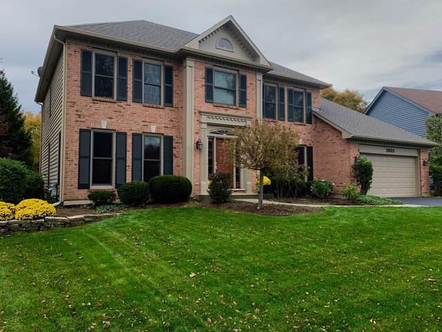 2803 Seiler Drive, Naperville, IL 60565 (MLS #10561065) :: Baz Realty Network   Keller Williams Elite