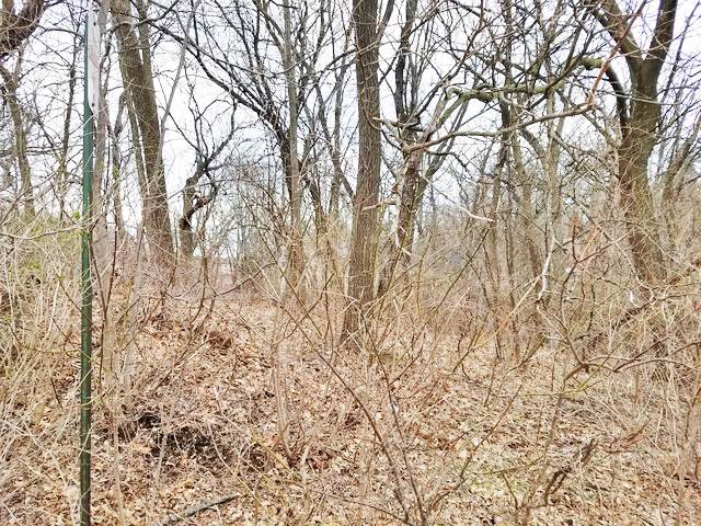 Lot 14 North Shore Drive, Oakwood Hills, IL 60013 (MLS #10561086) :: Property Consultants Realty