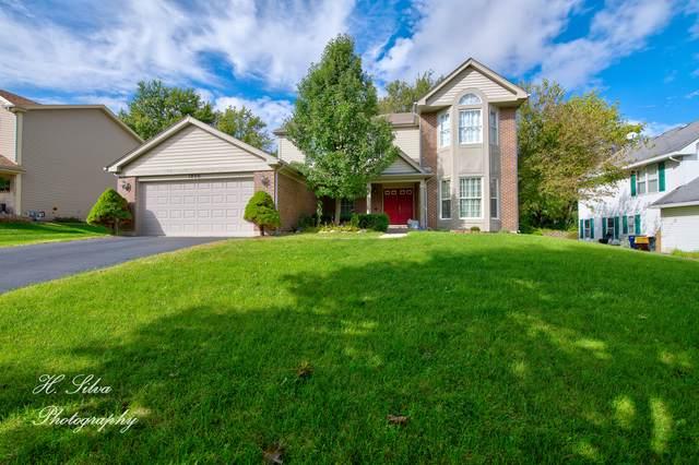 1920 Jester Lane, Algonquin, IL 60102 (MLS #10561387) :: Ryan Dallas Real Estate