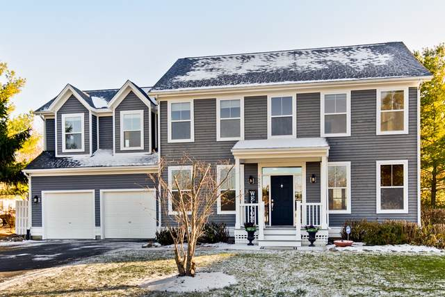 1355 Osage Orange Road, Grayslake, IL 60030 (MLS #10561460) :: Property Consultants Realty