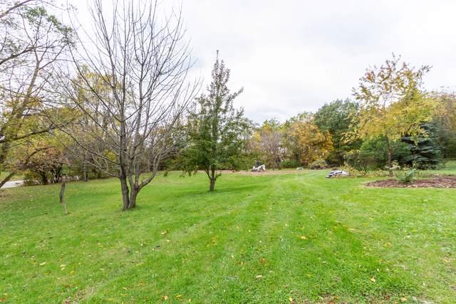 29W342 Old Lake Street, Elgin, IL 60120 (MLS #10561566) :: Angela Walker Homes Real Estate Group