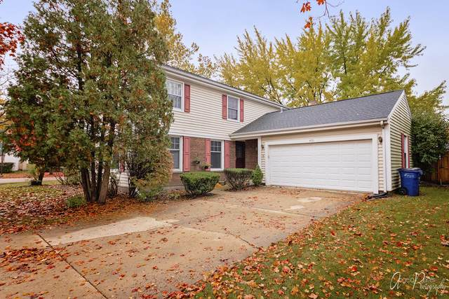 400 Elm Tree Lane, Vernon Hills, IL 60061 (MLS #10561834) :: Property Consultants Realty