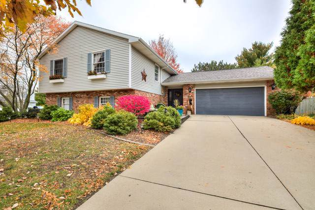 2703 Rainbow Avenue, Bloomington, IL 61704 (MLS #10562010) :: BNRealty