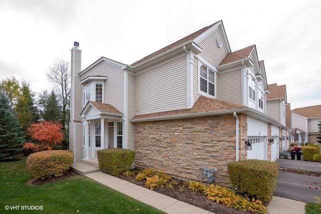 41 Kelsey Court, Algonquin, IL 60102 (MLS #10562428) :: Ryan Dallas Real Estate