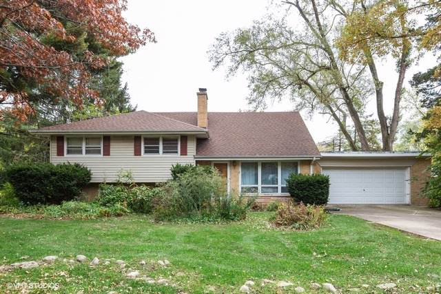 201 Oak Avenue, Westmont, IL 60559 (MLS #10562443) :: Ani Real Estate