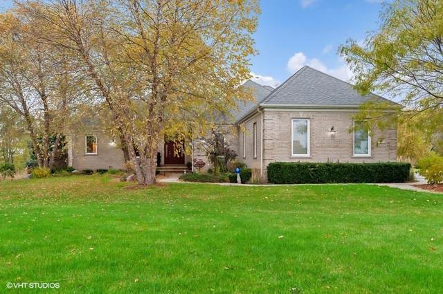 563 Birch Hollow Drive, Antioch, IL 60002 (MLS #10562780) :: The Dena Furlow Team - Keller Williams Realty