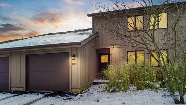 847 Shakespeare Drive, Grayslake, IL 60030 (MLS #10562946) :: Property Consultants Realty