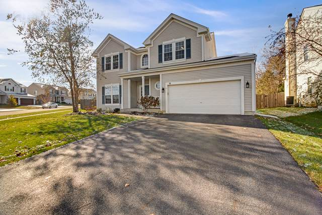 18 N Durham Lane, Round Lake, IL 60073 (MLS #10563124) :: Property Consultants Realty