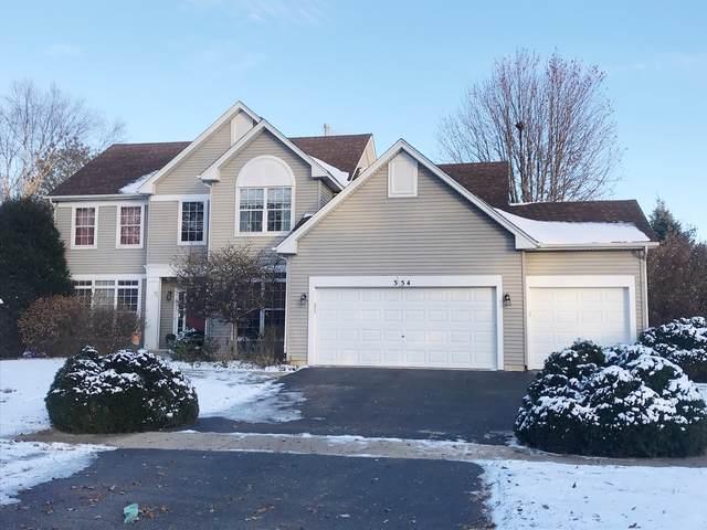 354 Whitewater Lane, Oswego, IL 60543 (MLS #10564092) :: Baz Realty Network | Keller Williams Elite