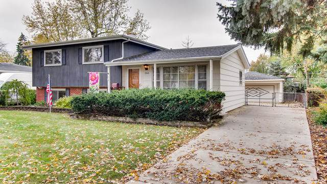 266 N Wesley Drive, Addison, IL 60101 (MLS #10564239) :: Littlefield Group