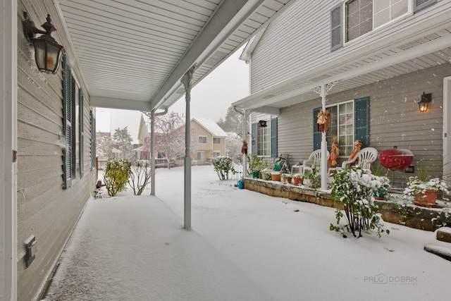 224 Village Creek Drive, Lake In The Hills, IL 60156 (MLS #10564628) :: Ryan Dallas Real Estate