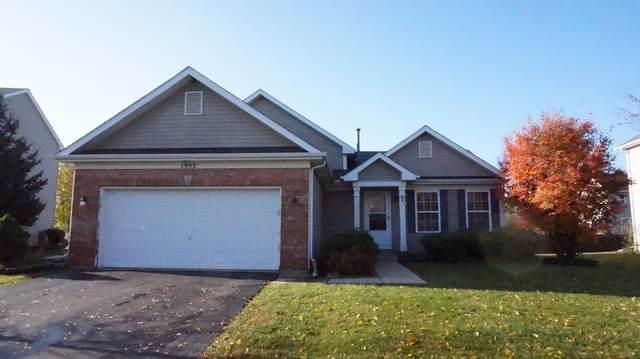1955 W Brimstone Road, Romeoville, IL 60446 (MLS #10564807) :: Baz Realty Network   Keller Williams Elite