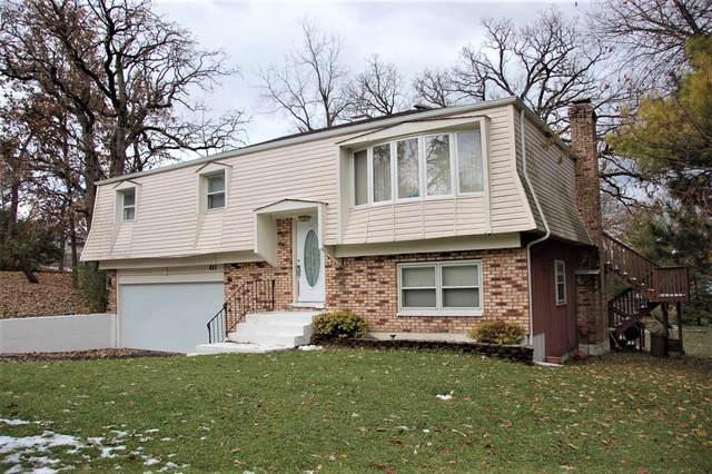 206 Indian Trail, Lake In The Hills, IL 60156 (MLS #10565084) :: Ryan Dallas Real Estate
