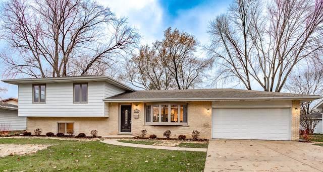 118 E Chewink Court, Palatine, IL 60067 (MLS #10565318) :: Ani Real Estate