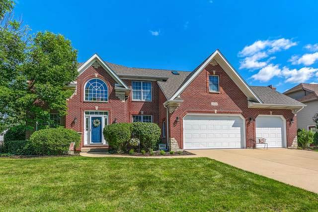 3511 Mistflower Lane, Naperville, IL 60564 (MLS #10565650) :: O'Neil Property Group