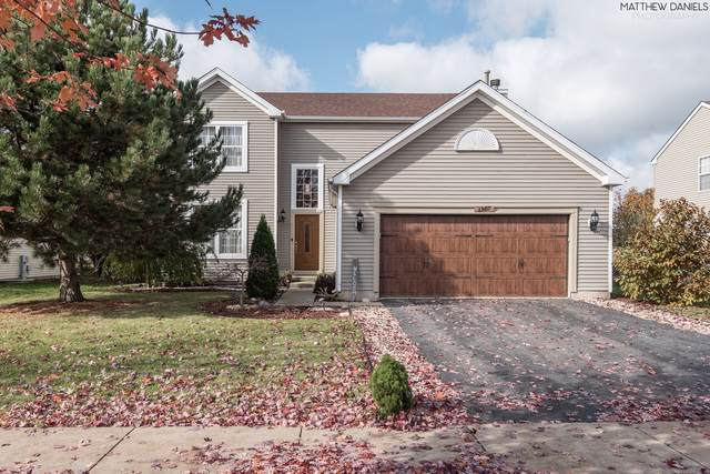 1307 Bridgehampton Drive, Plainfield, IL 60586 (MLS #10565801) :: Angela Walker Homes Real Estate Group