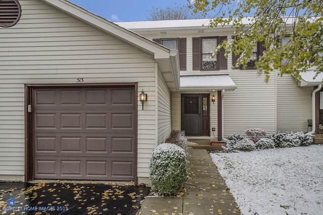 513 Villa Circle Drive #31, Palatine, IL 60067 (MLS #10566184) :: Baz Realty Network   Keller Williams Elite