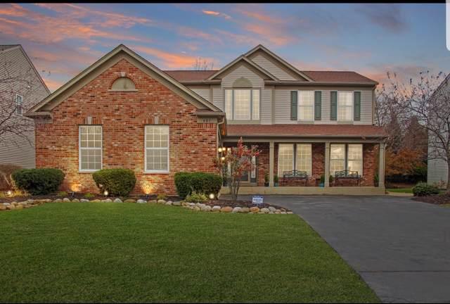 481 Tuscany Drive, Algonquin, IL 60102 (MLS #10566195) :: Ryan Dallas Real Estate