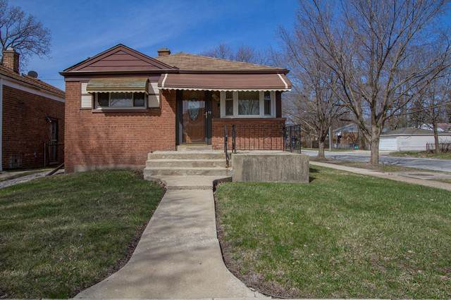 10100 S Hoxie Avenue, Chicago, IL 60617 (MLS #10566265) :: John Lyons Real Estate