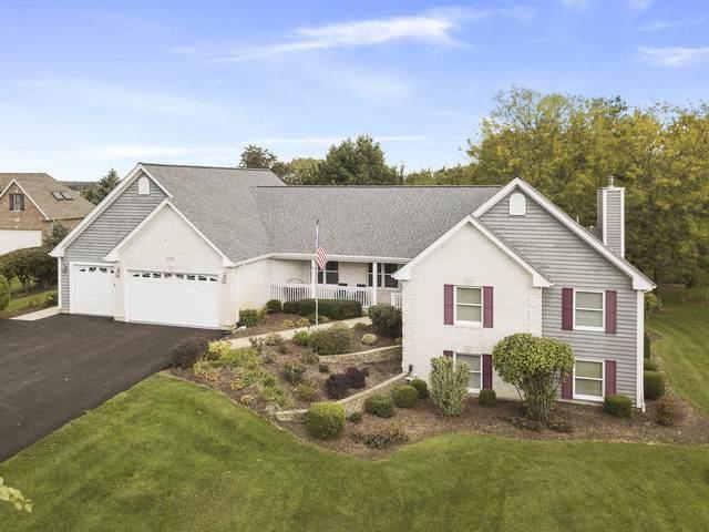 10N659 Prairie Crossing Drive, Elgin, IL 60124 (MLS #10566437) :: Angela Walker Homes Real Estate Group