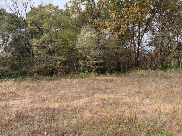 LOT 4 22-30-11W Central Street, Pembroke Twp, IL 60958 (MLS #10567634) :: The Spaniak Team