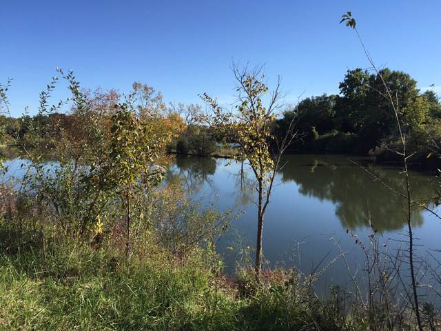 Lot 31 Lake Metonga Trail, Grant Park, IL 60940 (MLS #10567675) :: Angela Walker Homes Real Estate Group